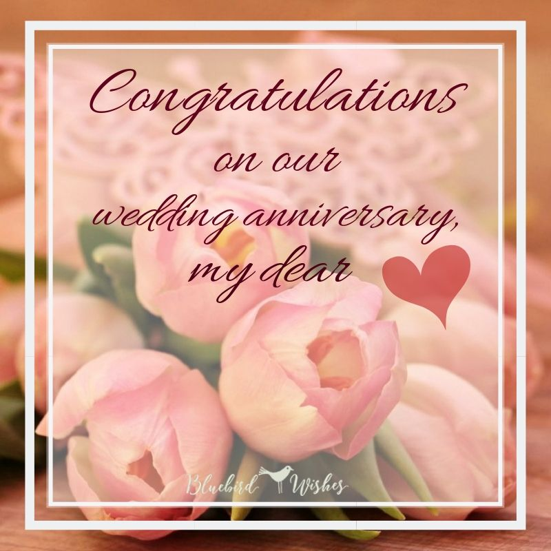 Romantic wedding anniversary messages for wife | Bluebird Wishes