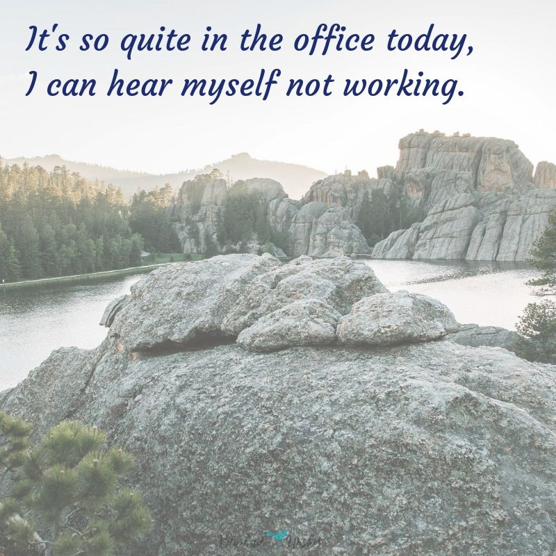 funny quotes about office funny quotes about office Funny quotes about office funny quotes about office