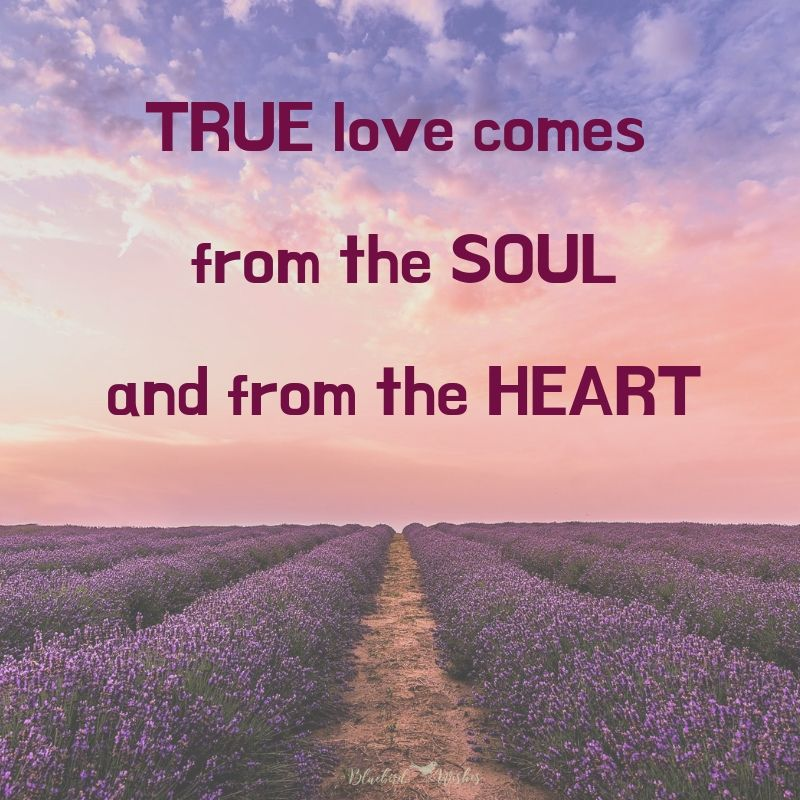 Sayings about true love sayings about true love Sayings about true love sayings about true love