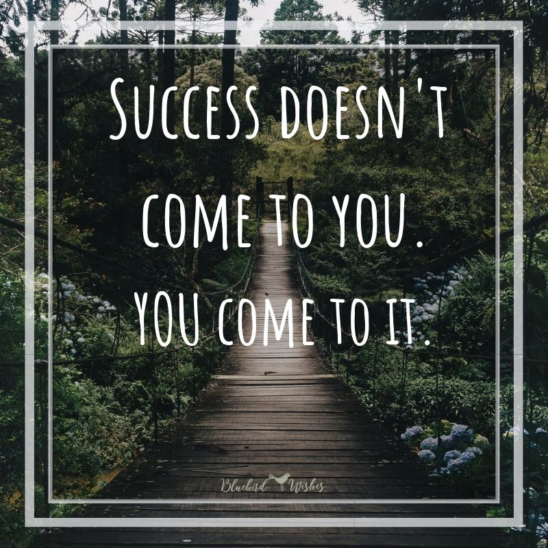 Success quotes for students success quotes for students Success quotes for students success quotes for students