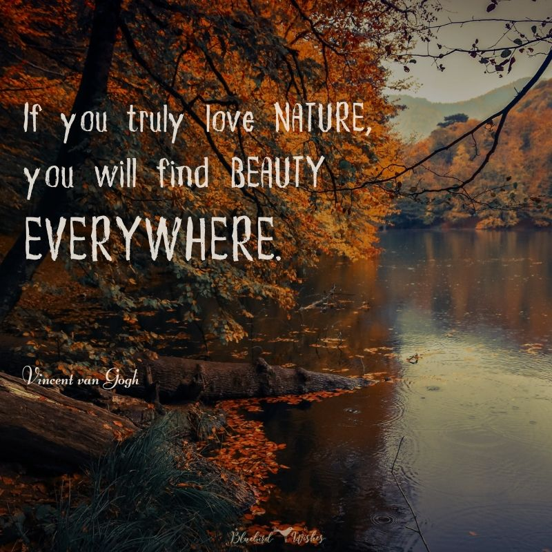 Beautiful words about nature beautiful quotes about nature Beautiful quotes about nature beautiful words about nature