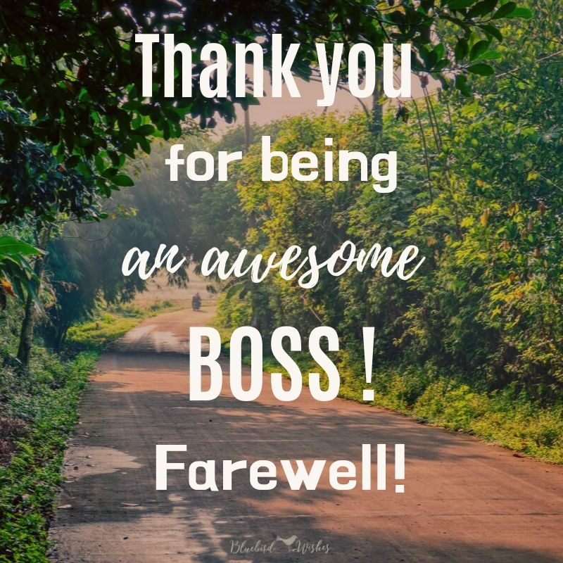Farewell wishes for boss farewell wishes for boss Farewell wishes for boss Farewell wishes for boss