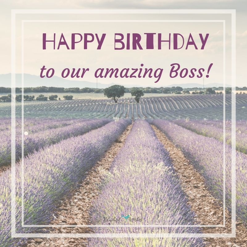 birthday messages for boss birthday greetings for boss Birthday greetings for boss birthday messages for boss