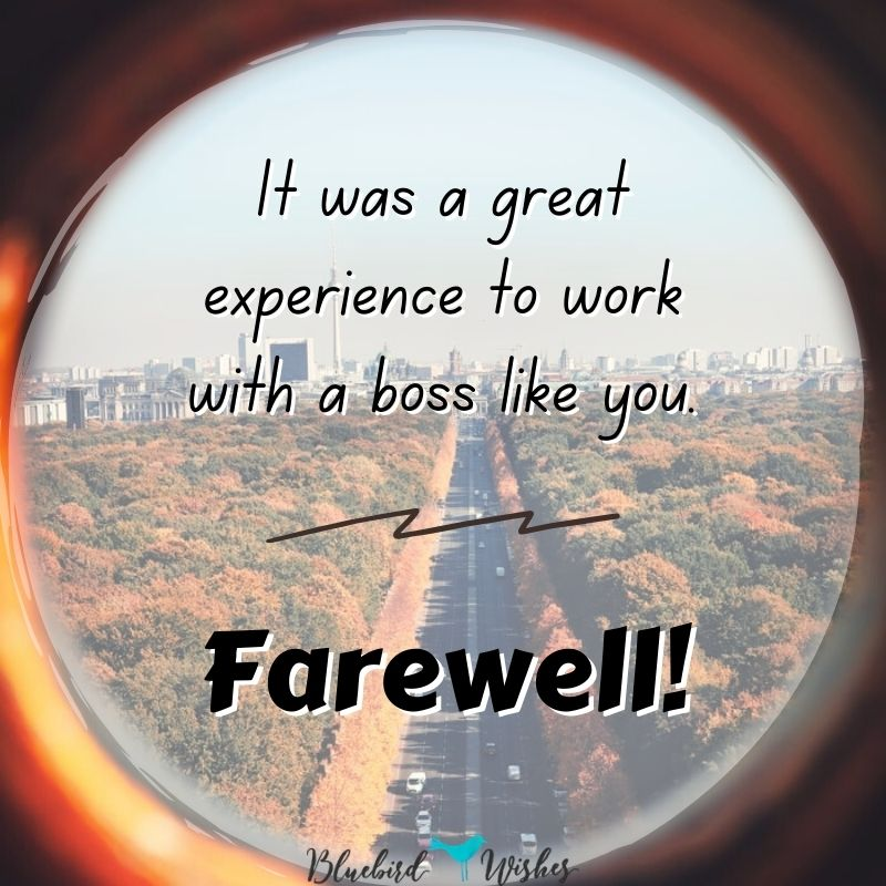 farewell words for boss farewell wishes for boss Farewell wishes for boss farewell words for boss 1