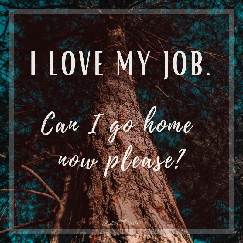 funny sayings about work funny sayings about work Funny sayings about work funny sayings about work