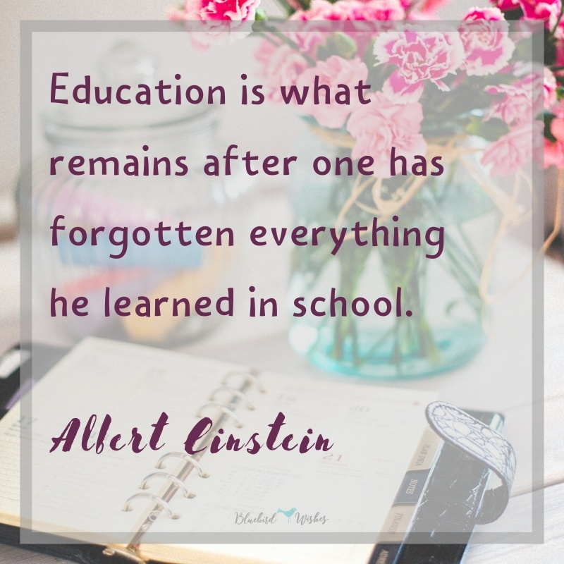 Short humorous texts about education funny quotes about education Funny quotes about education humorous texts about education