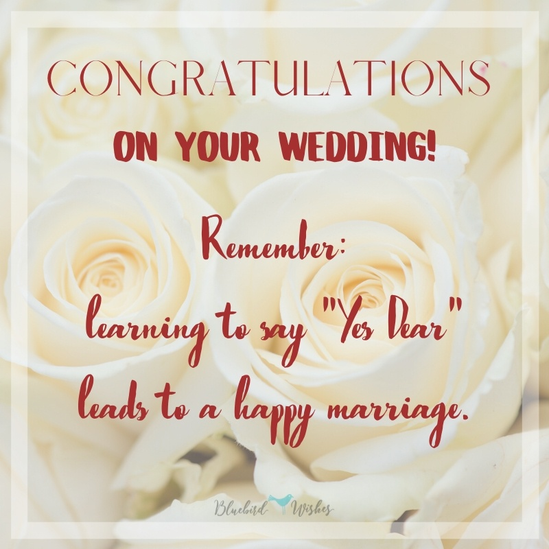 Funny wedding messages for newly married couple funny wedding messages for newly married couple Funny wedding messages for newly married couple Funny wedding messages for newly married couple
