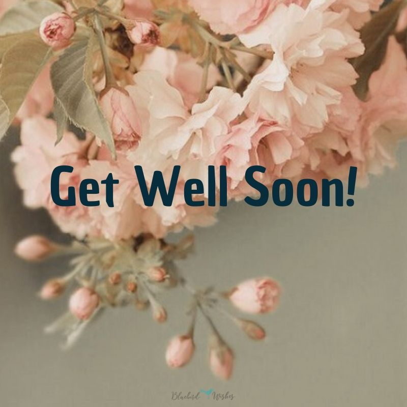 Wishes to get well after surgery wishes to get well after surgery Wishes to get well after surgery wishes to get well after surgery