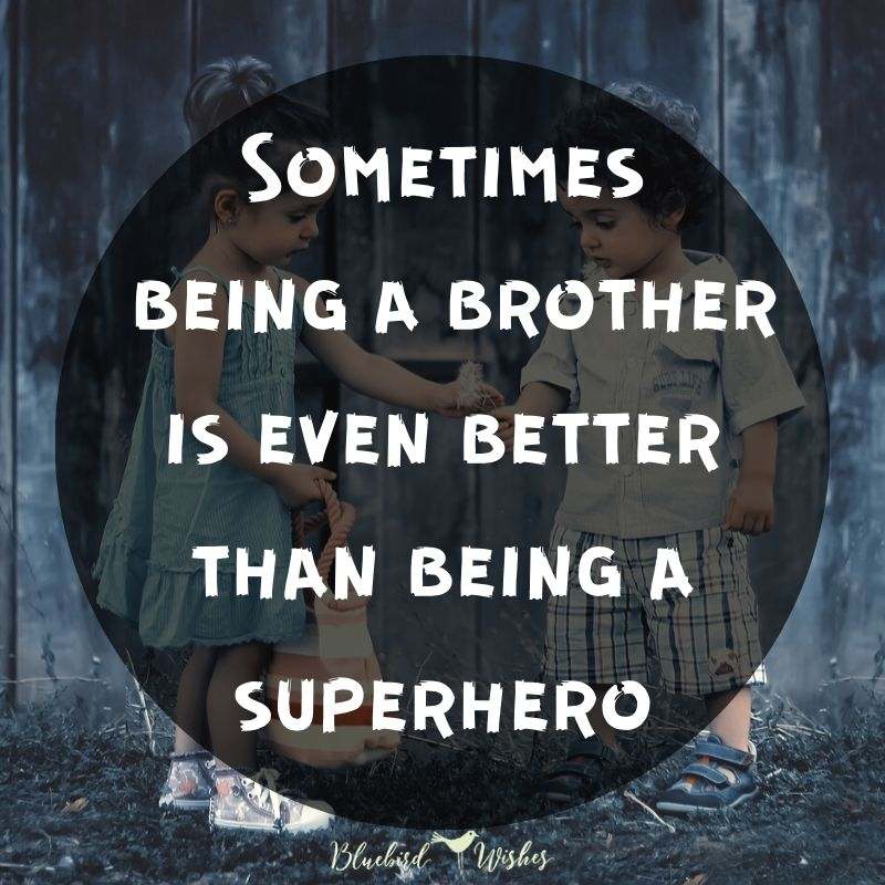 image about brother funny quotes about brothers Funny quotes about brothers image about brother