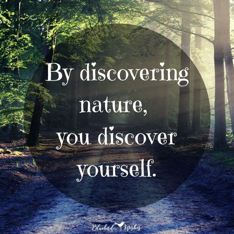 Nice quote about nature beautiful quotes about nature Beautiful quotes about nature nice quote about nature