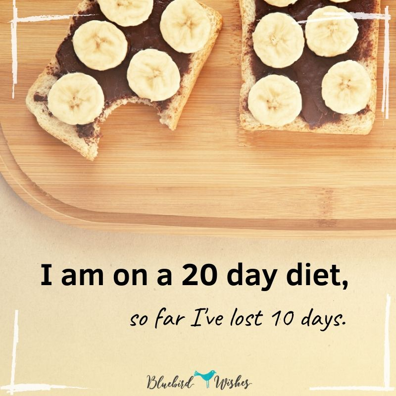 Funny card about dieting funny quotes about dieting Funny quotes about dieting funny card about dieting