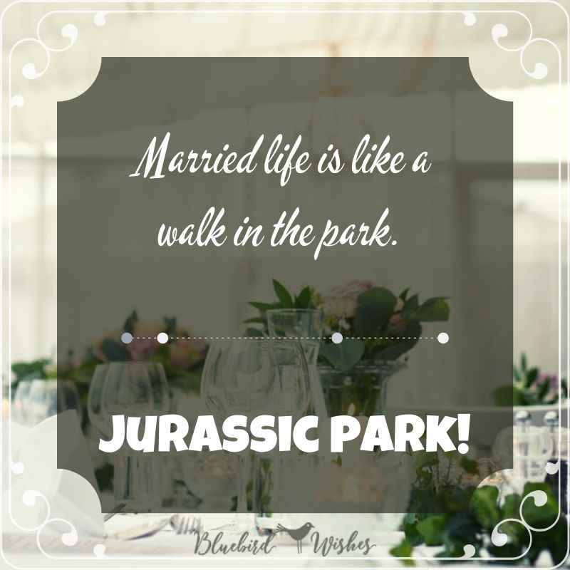 funny quote about wedding funny wedding messages for newly married couple Funny wedding messages for newly married couple funny quote about wedding