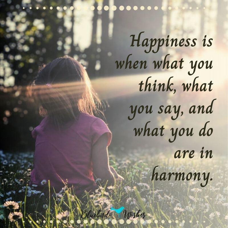 inspiring quotes about happiness inspirational quotes about happiness Inspirational quotes about happiness and a happy life insping quotes about happiness