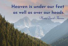 Beautiful sayings about nature