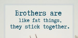 Funny sayings about brothers