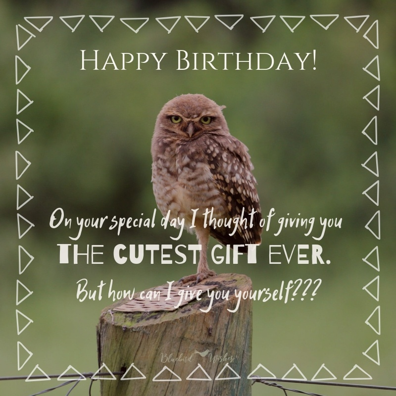 Funny Birthday Messages For Friend Bluebird Wishes