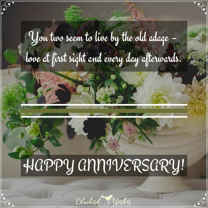 funny messages for wedding anniversary funny wishes for wedding anniversary Funny wishes for wedding anniversary funny messages for wedding anniversary