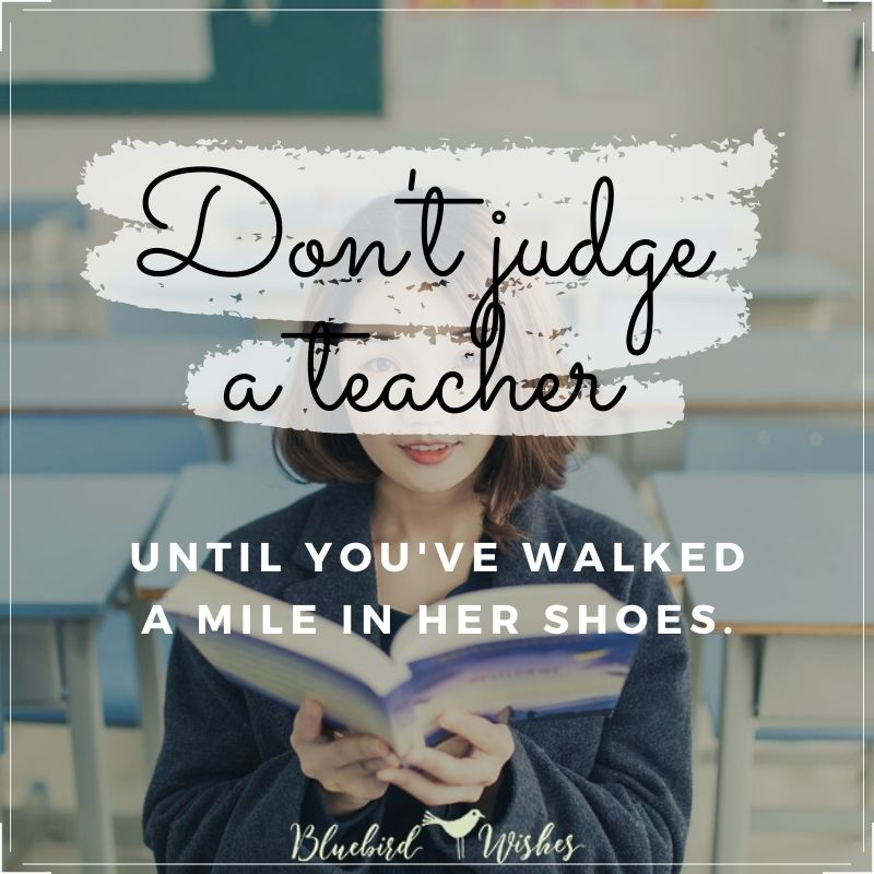 Funny quotes about teachers funny quotes about teachers Funny quotes about teachers funny quotes about teachers