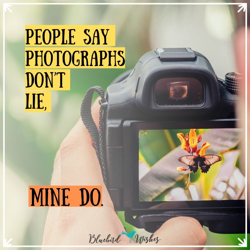 funny words about photography funny quotes about photography Funny quotes about photography funny words about photography