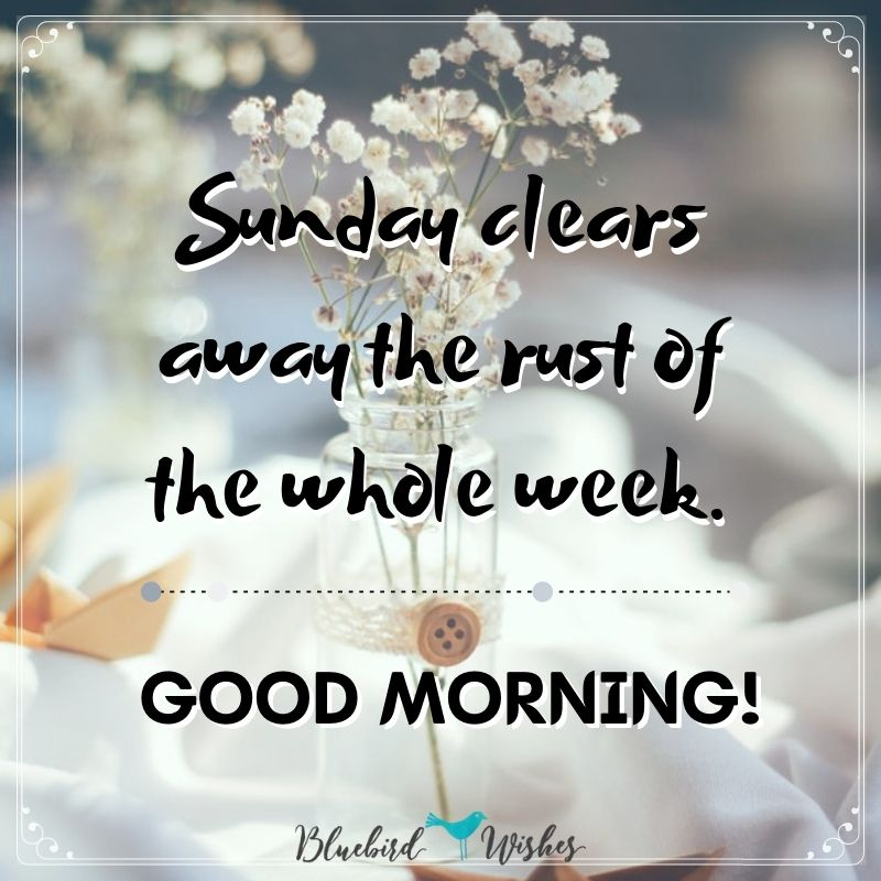 Sunday good morning  quotes sunday good morning messages Sunday good morning messages sunday good morning quotes