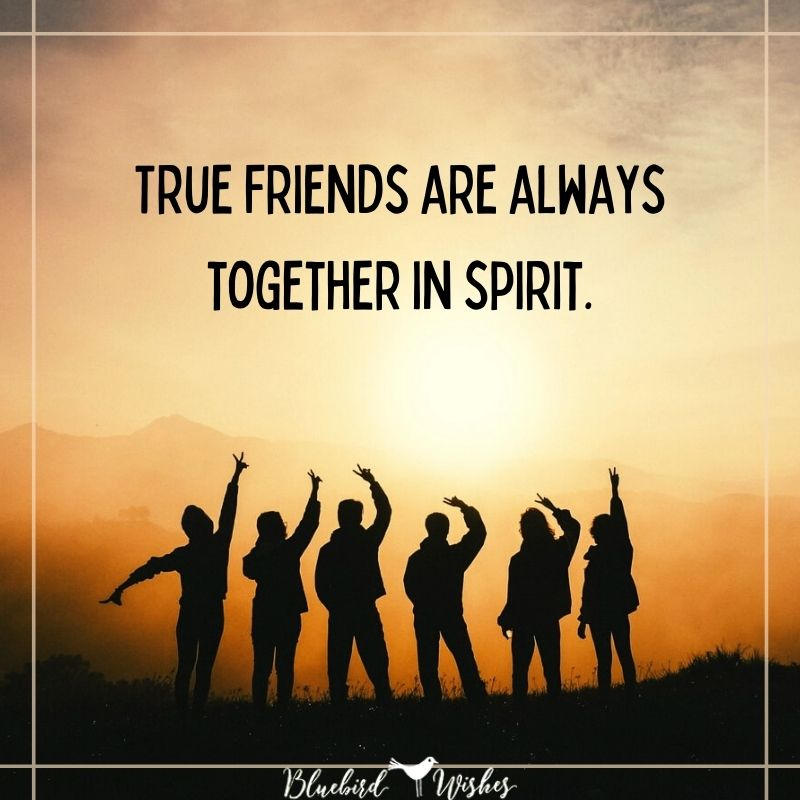 True friendship card true friendship quotes True friendship quotes true friendship card
