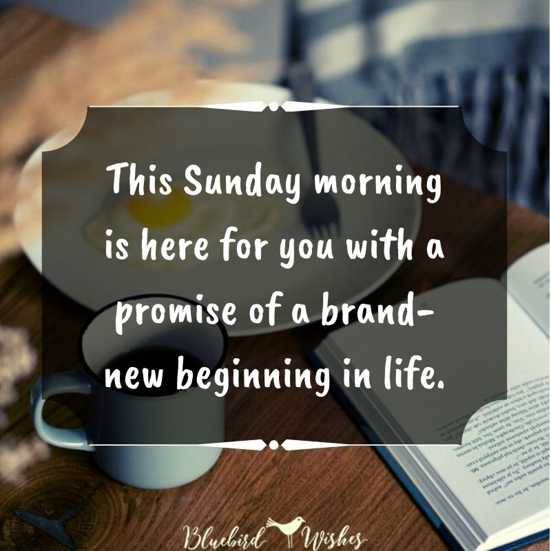 Happy Sunday card happy sunday messages Happy Sunday messages happy sunday card