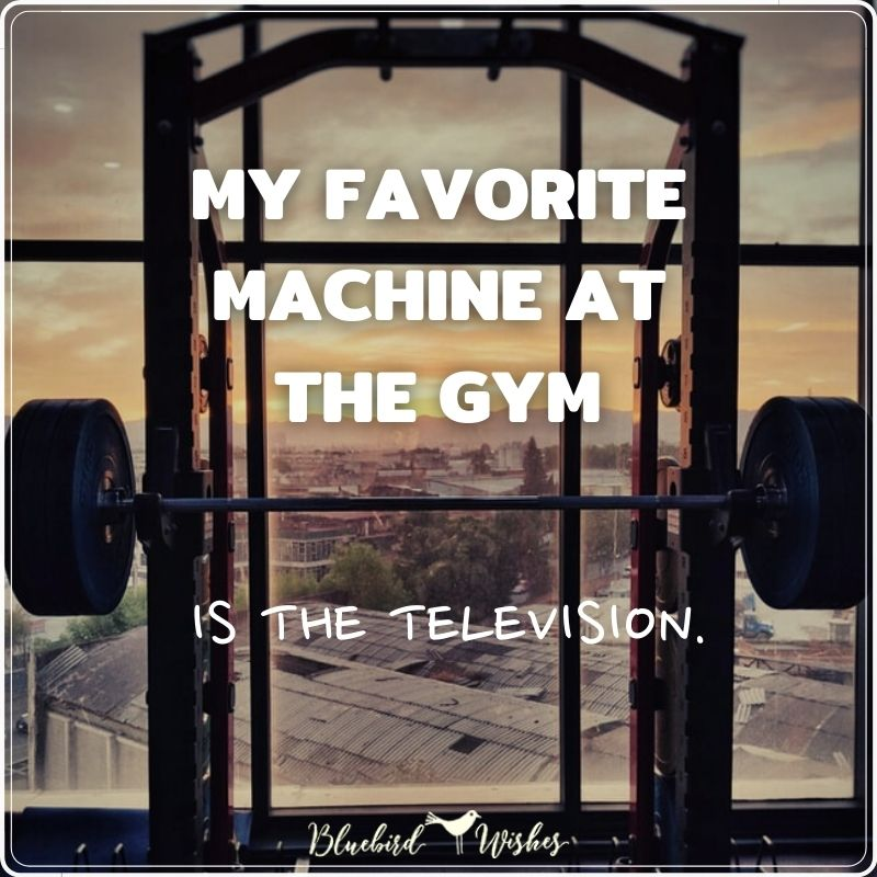 humorous quotes about gym funny quotes about gym Funny quotes about gym humorous quotes about gym