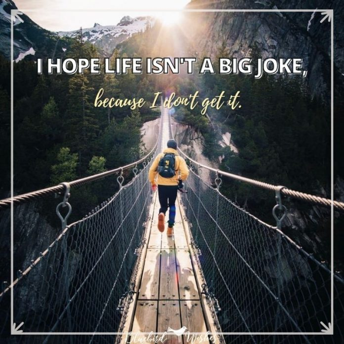 funny sayings about life