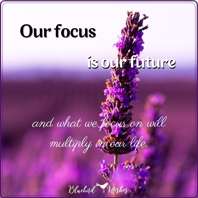 stay focused image stay focused quotes Stay focused quotes stay focused image