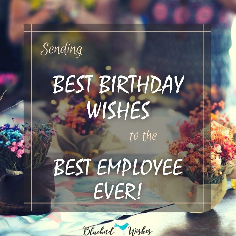birthday messages for employee birthday wishes for employee Birthday wishes for employee birthday messages for employee