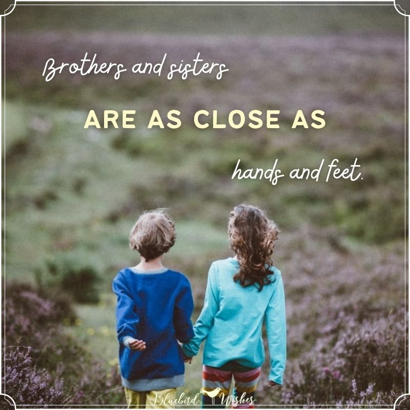 brother and sister card brother and sister quotes Brother and sister quotes brother and sister card